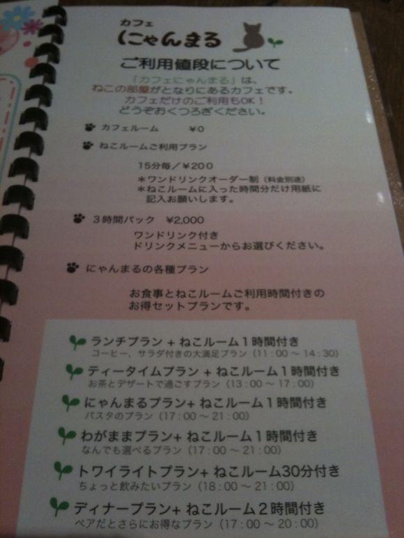 image from http://tadashiokoshi.typepad.com/.a/6a00e54ff835b688330120a6dc38b5970b-pi